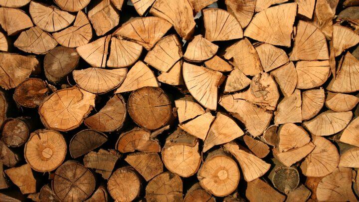 Brændekløver – Den ultimative guide til at vælge den optimale model