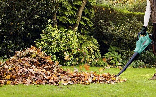 Guide til løvsugere fra Bosch – Sådan finder du den bedste Bosch løvsuger