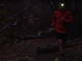Pandelygte til løb
