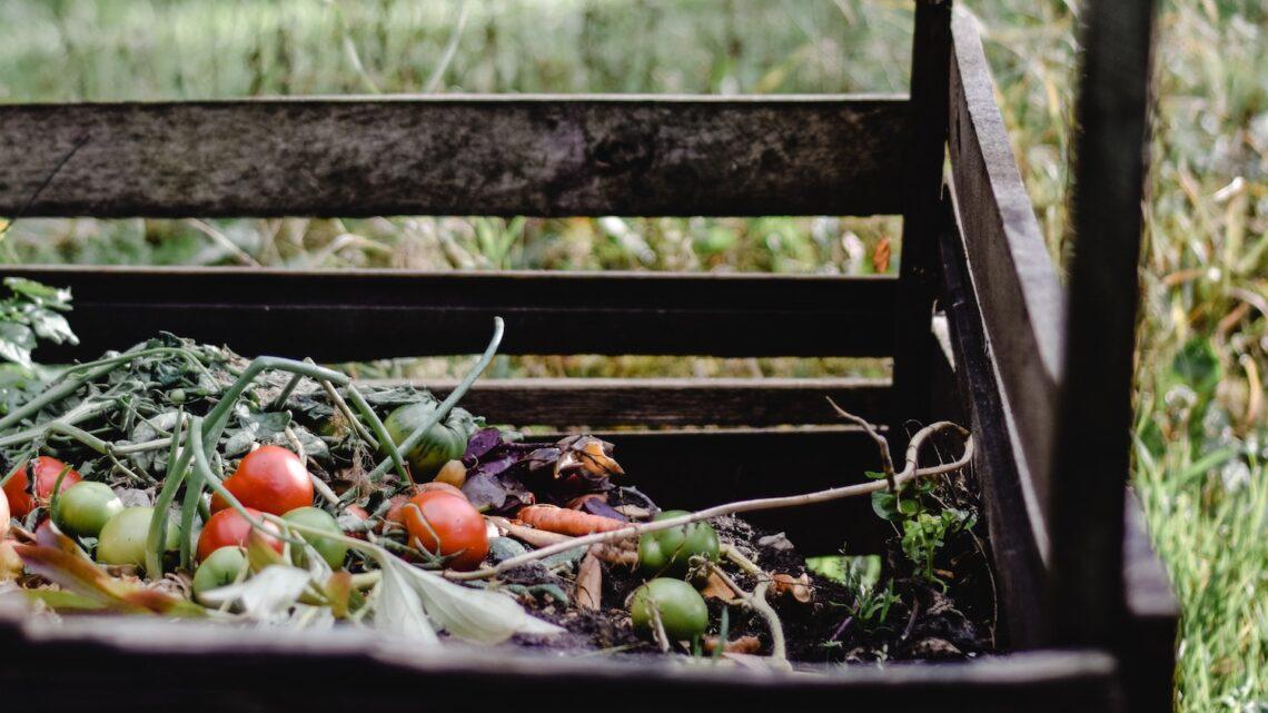 Kompostbeholder guide – Ultimativ guide til den helt rette model for dig