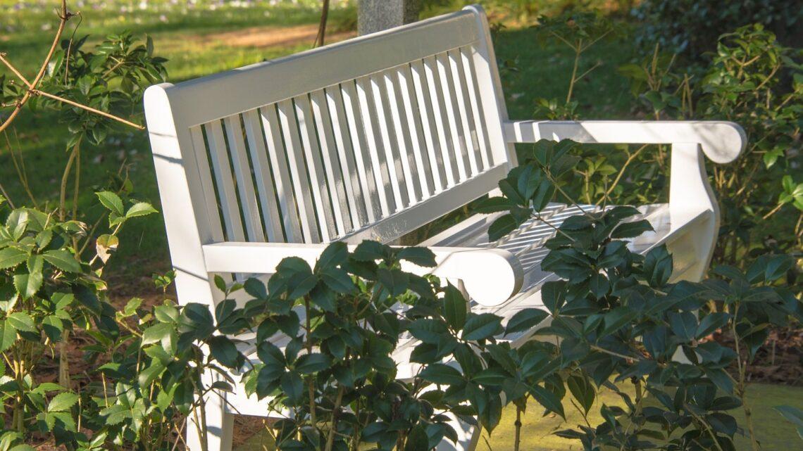 Havebænk i træ – Vi guider dig igennem gode valg til prisen