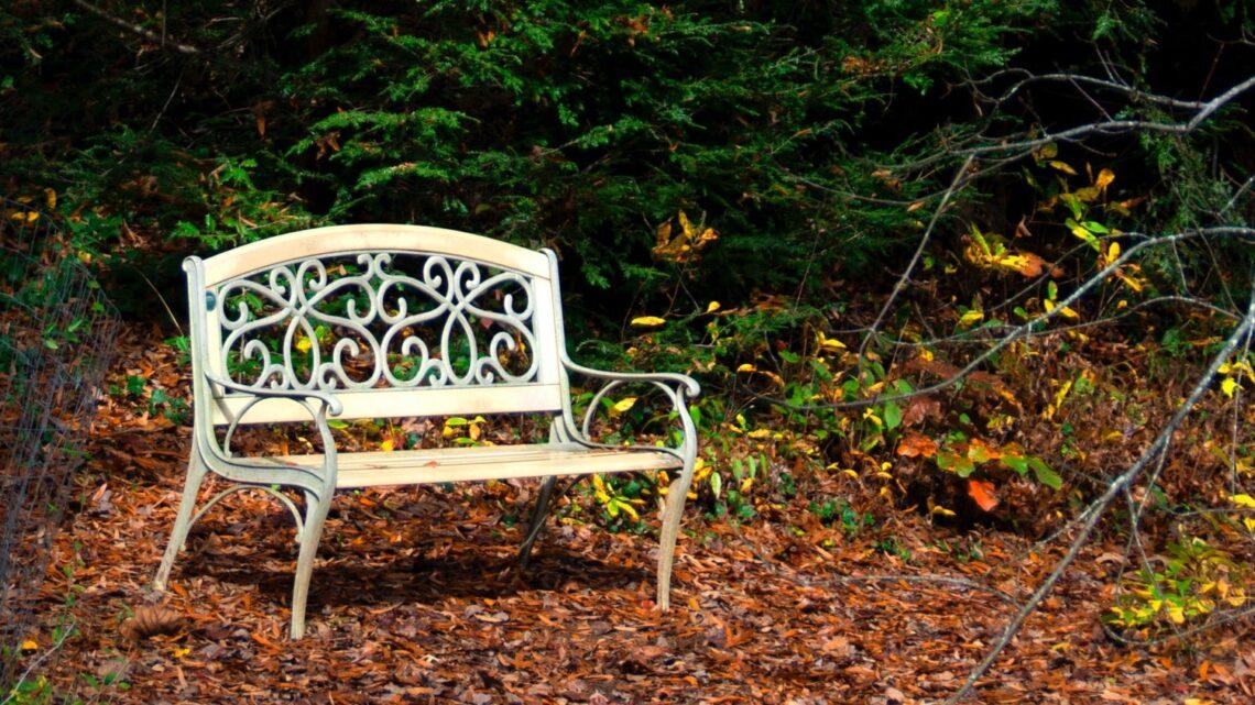 Havebænk i metal – Vi har samlet flotte og funktionelle havebænke